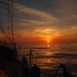Sail your dream