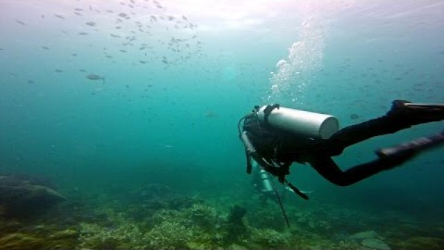 Sailing Admirer ep3 - Koh Lipe Diving & Fishing