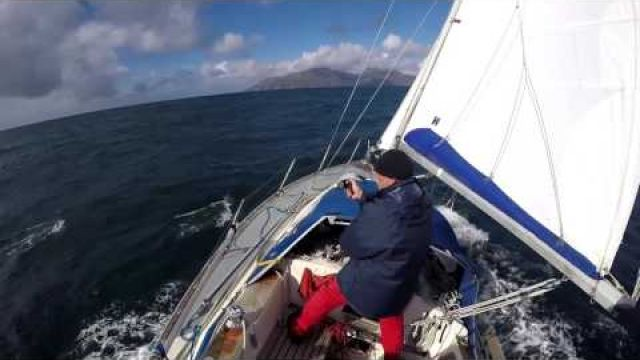 Sailing with dolphins - Hebridean Sea