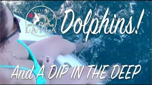 Dolphins and a Dip in the Deep - Sailing SV Layla Ep. 5