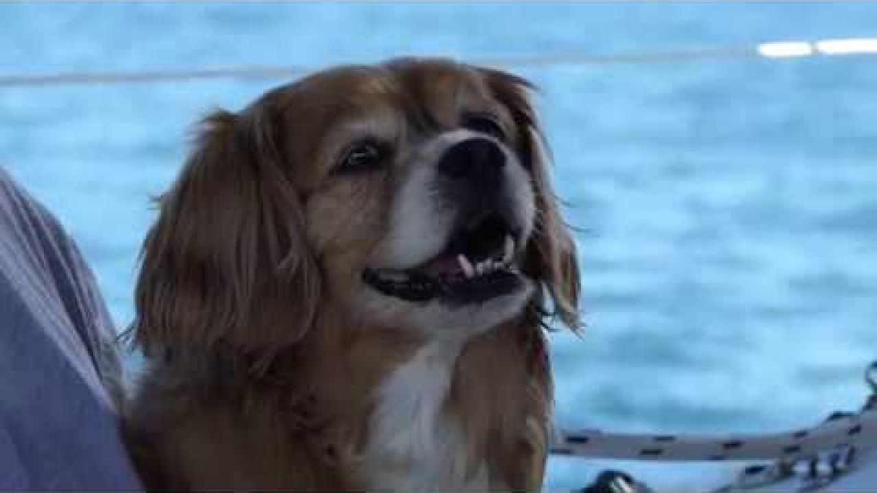 Sailing Cheryl Ann. Episode 2. A Trip to St. Helena Island, Moreton Bay.