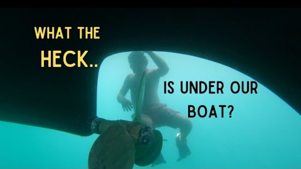 EP 32: Sail Channel Islands: WHAT THE HECK is under our boat?! Little Scorpion & Fry's Harbor