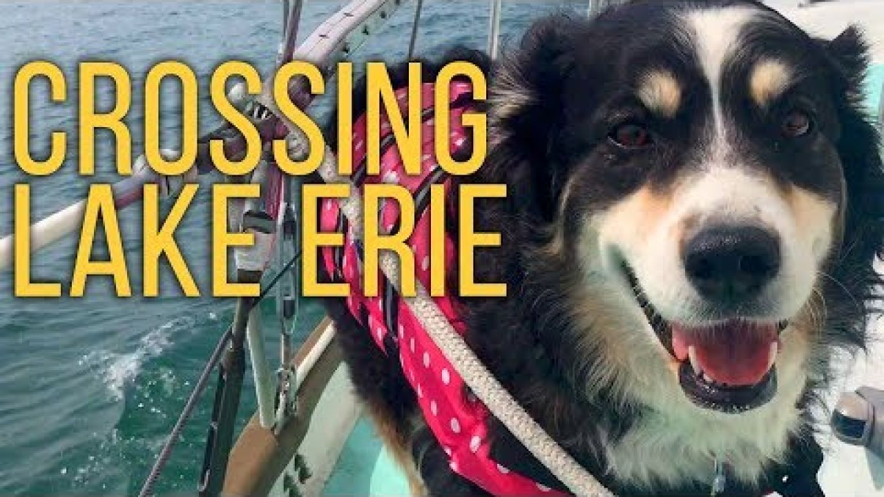 Ep2: Sailing Lake Erie, and Losing the Best Member of our Crew