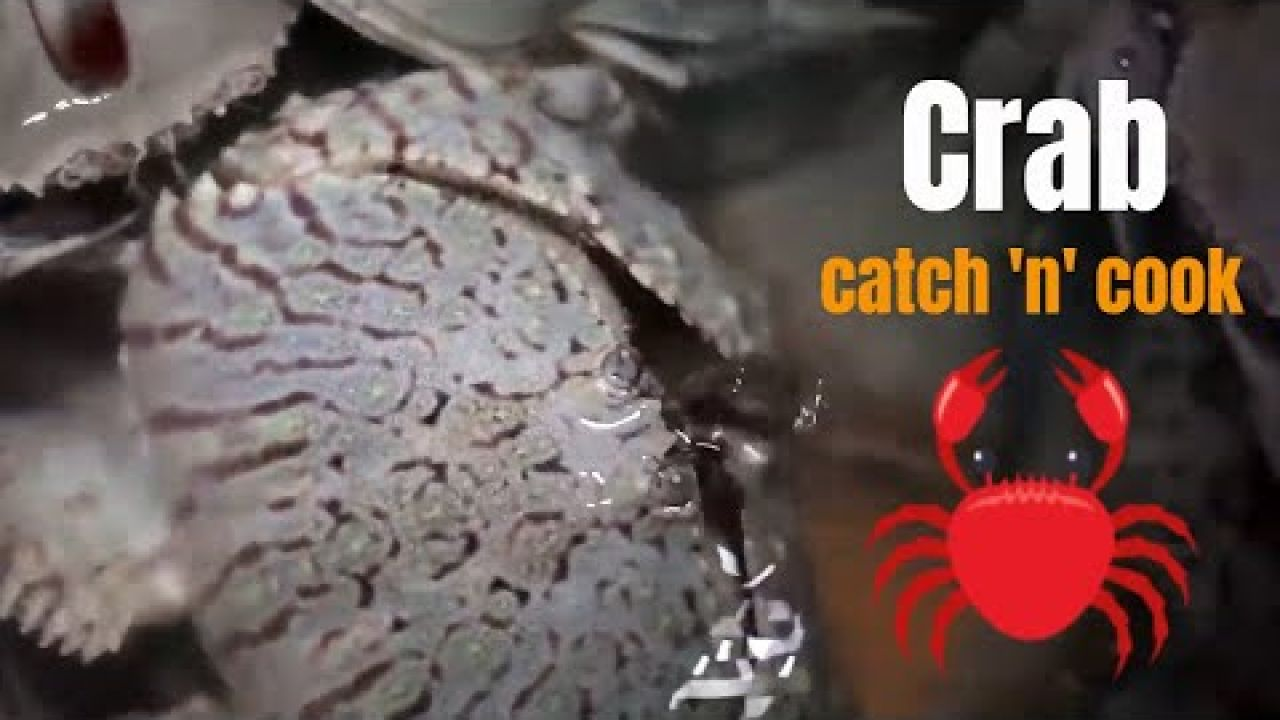 Crab catch and cook in George Town, Bahamas