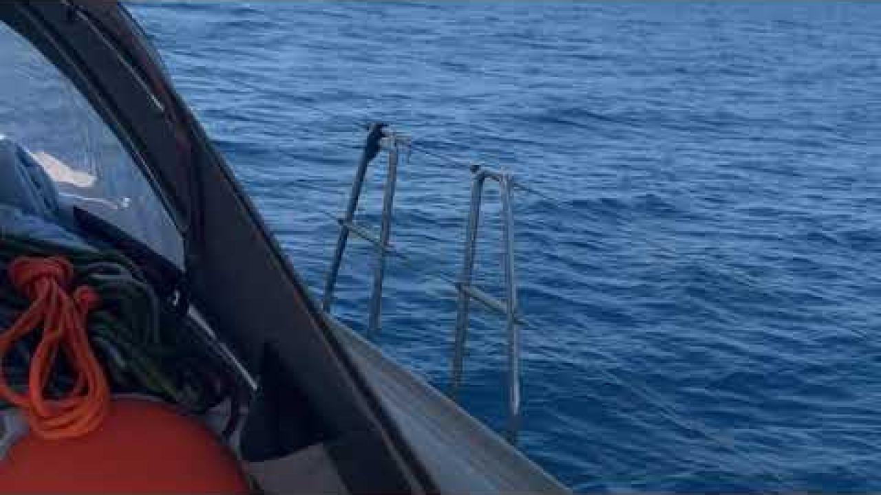 Summer Sail with Lifgun