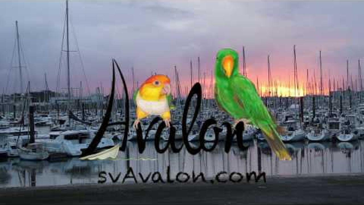 Episode 01 - The Journey Begins - Let's Meet Avalon in La Rochelle France
